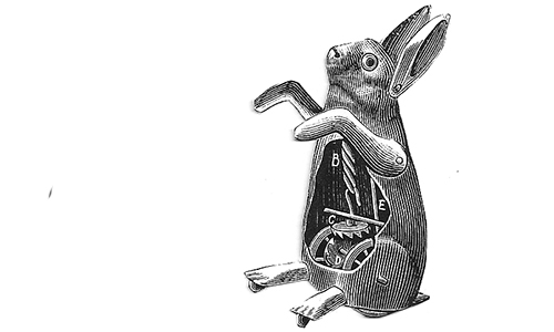 david_london_magic_rabbit_3